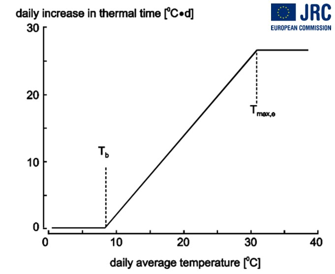 Daily increase thermal time.jpg